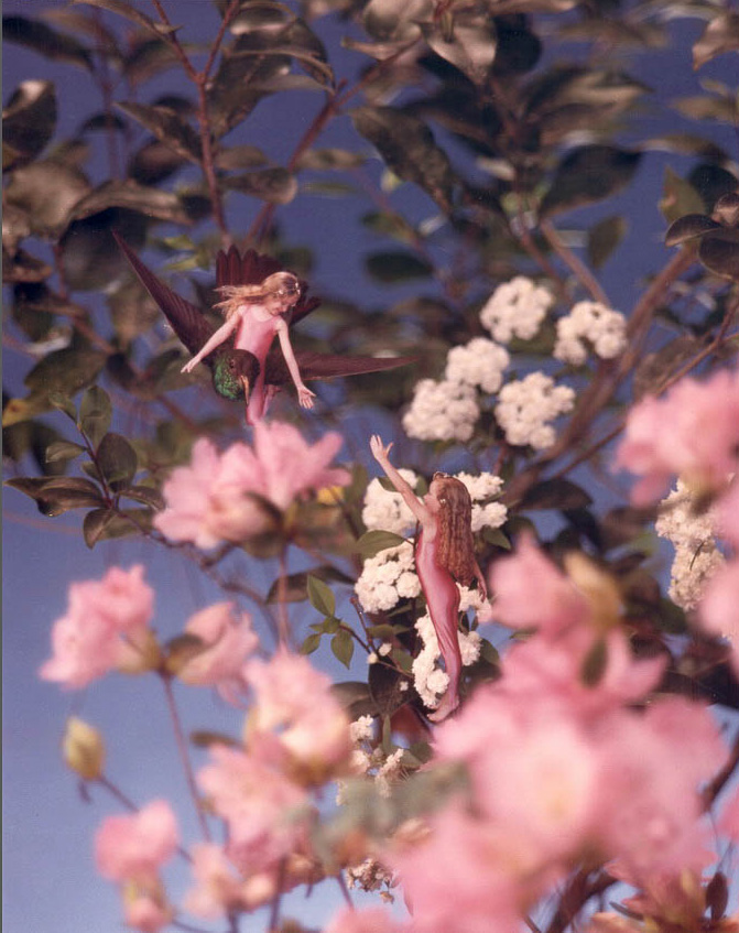 Two wingless fairies in the flowers with one riding a humming bird reaching down to pick up sister
