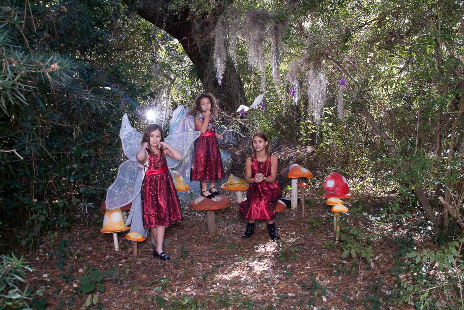 Fairies-playing-in-mushroom-garden-wearing wings-sitting on mushrooms