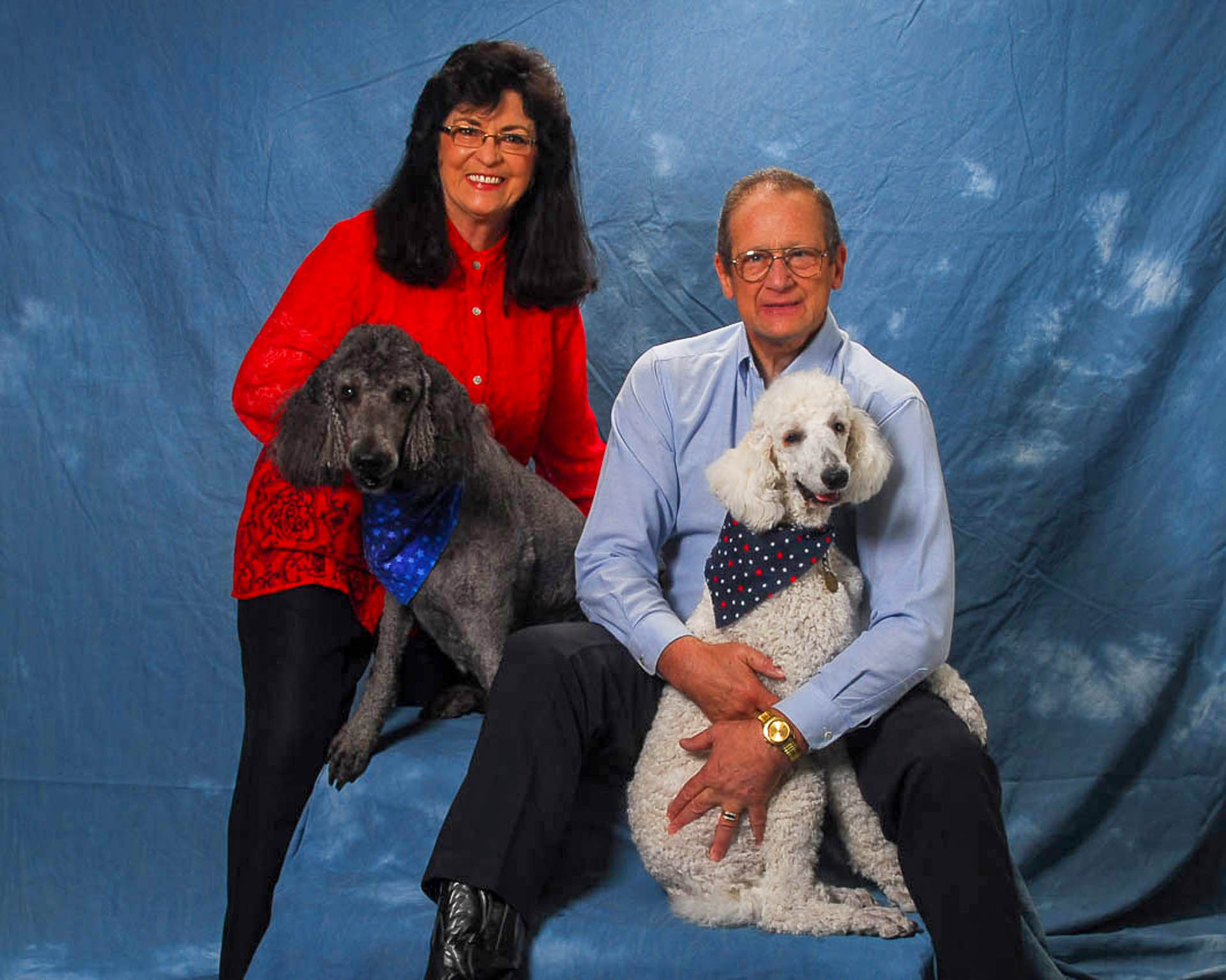 Husband wife and two pet poodles portrait on blue background