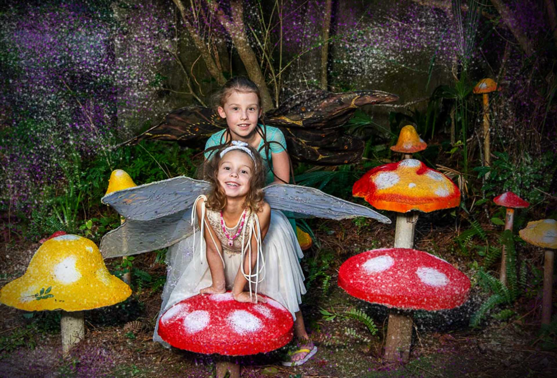 Portrait of two girls wearing fairy wings in a mushroom Forrest